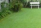 Mitchells Flat Lawn and turf 2